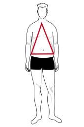 Hình dạng cơ thể hình tam giác