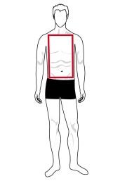 Hình dạng cơ thể hình chữ nhật