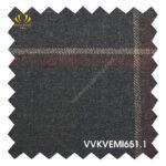 VVKVEMl651.1